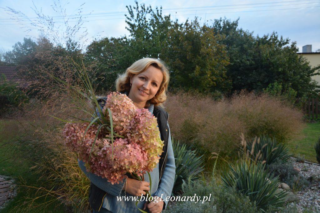 suszone-kwiaty-hortensji-001