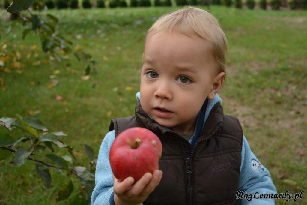 na jabłuszka