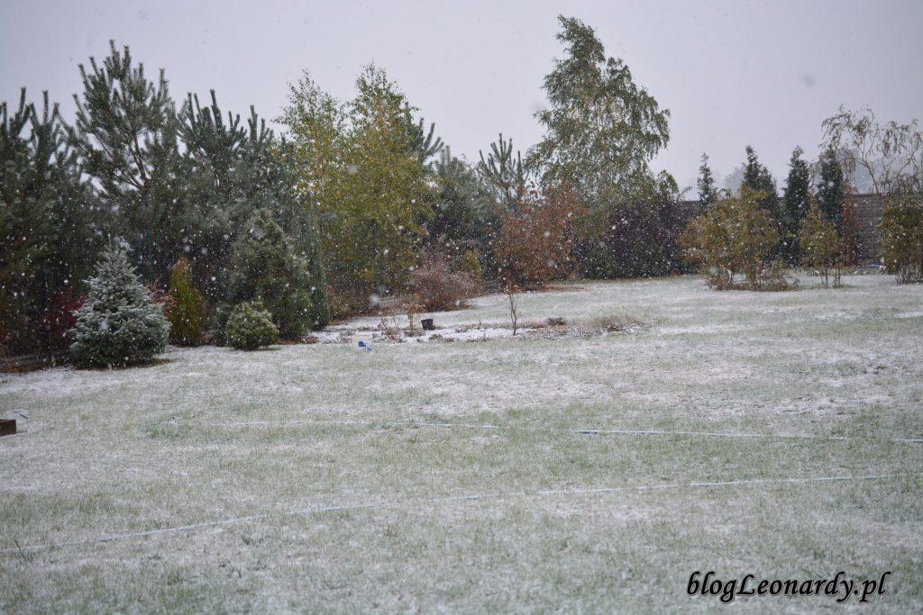 zima w październiku