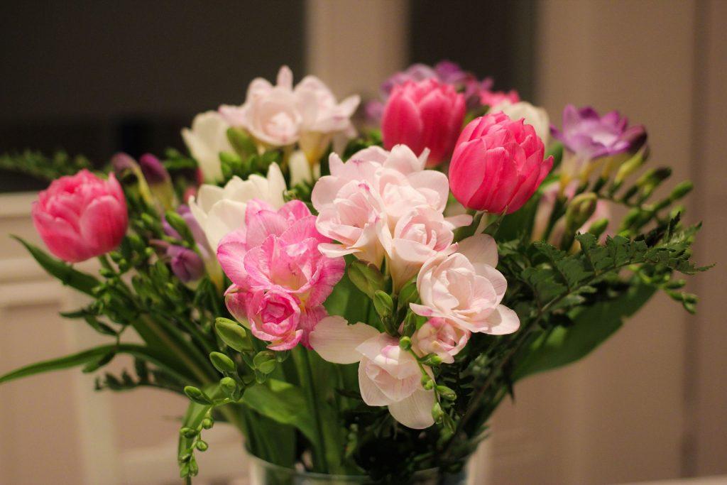 flowers-675943_1920