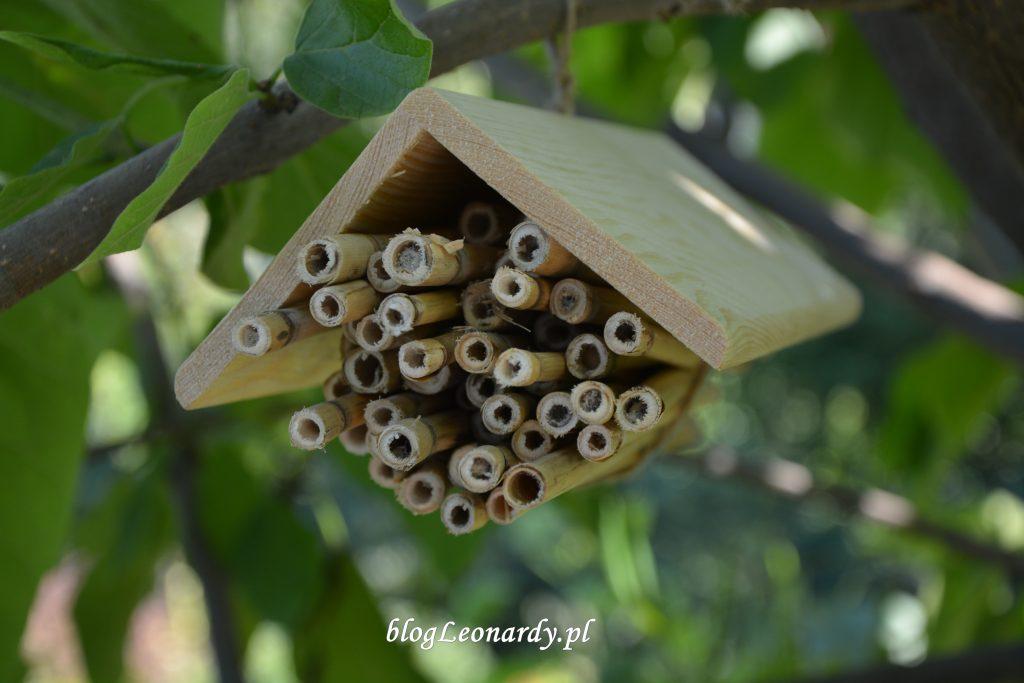 domek dla pszczół (2)