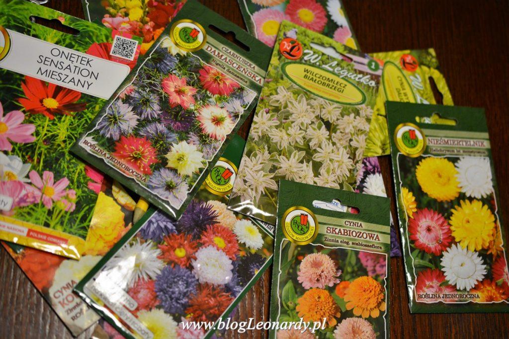 nasiona kwiatów jednorocznych na rabatę