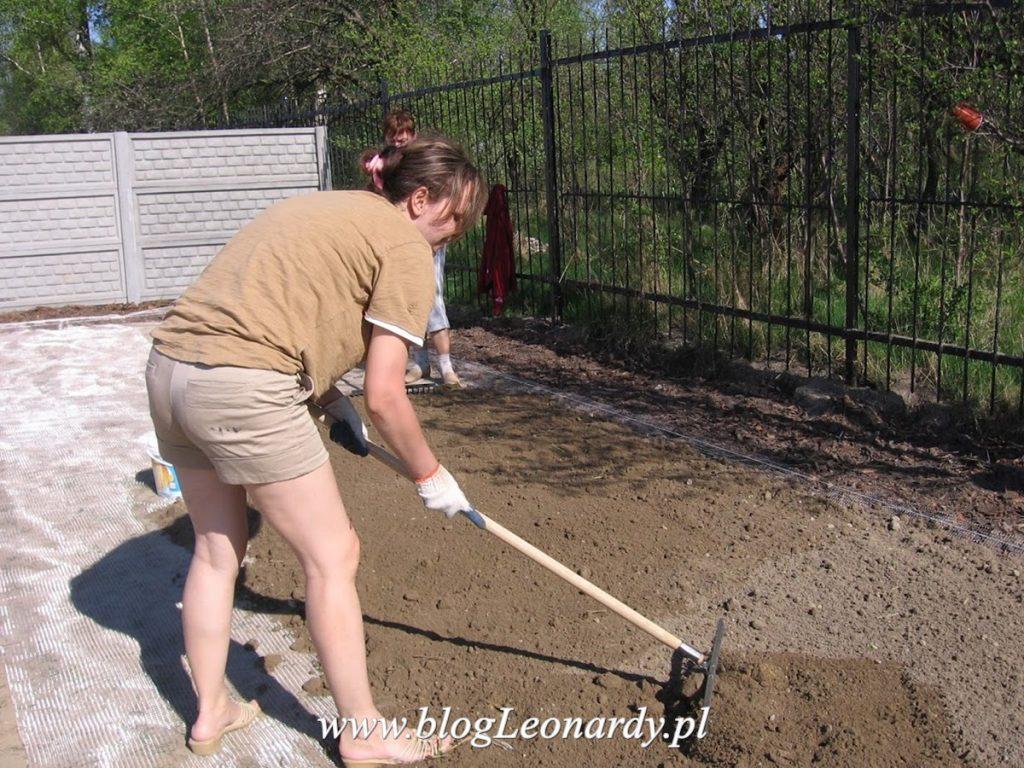 zakładanie trawnika - wyrównanie