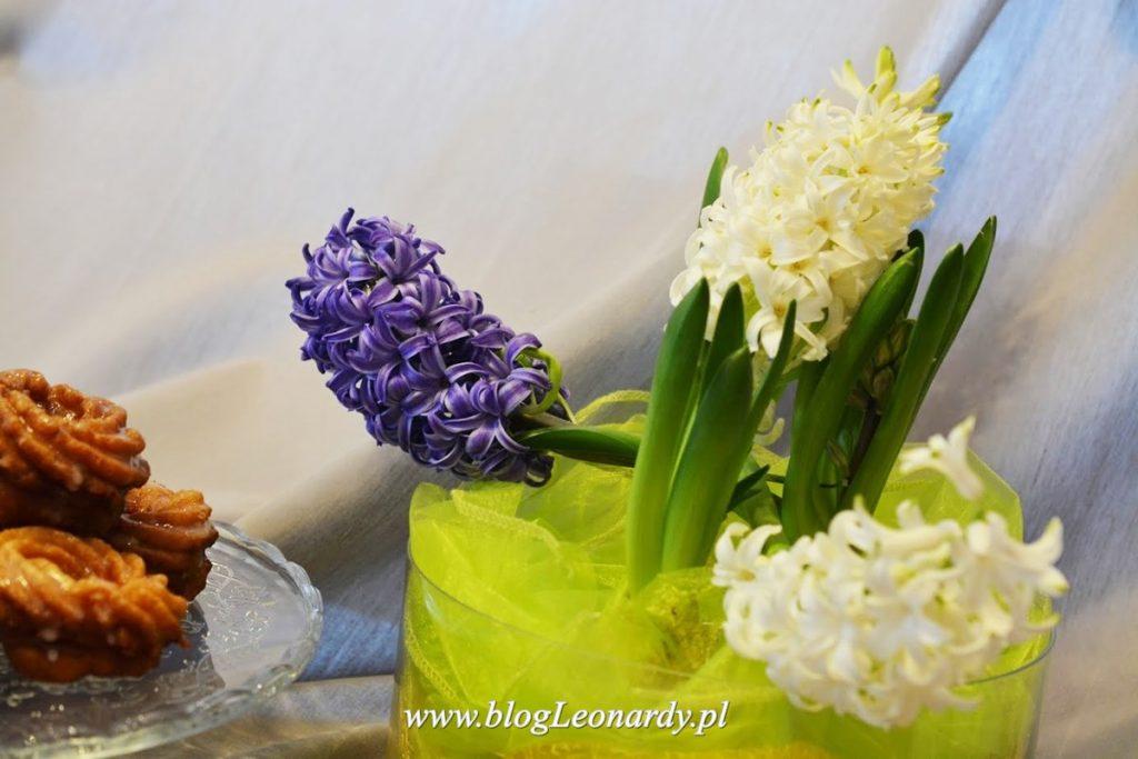 dekoracje wielkanocne - hiacynty